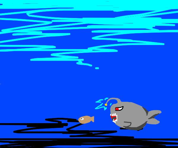 killer fish in the deep sea
