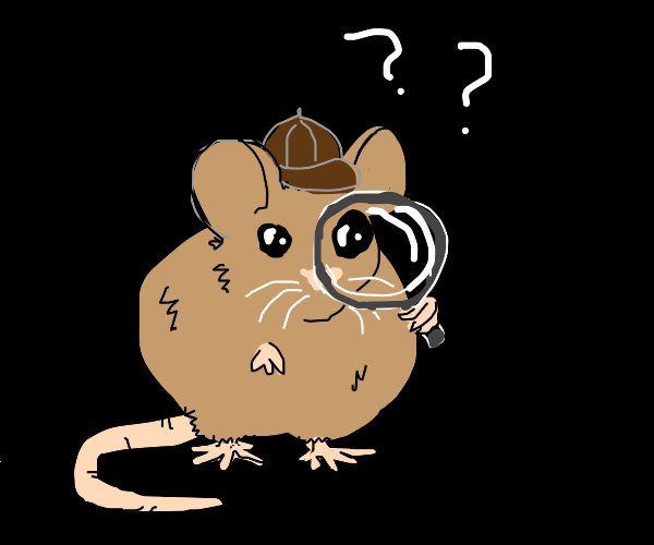 mouse looking for clues