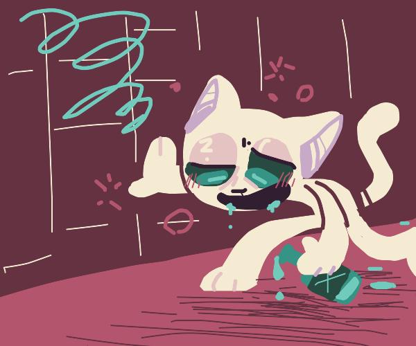 Cat gets drunk