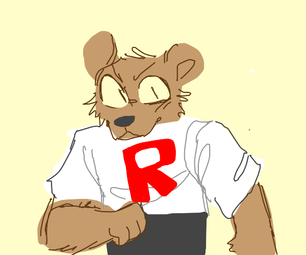 team rocket bear