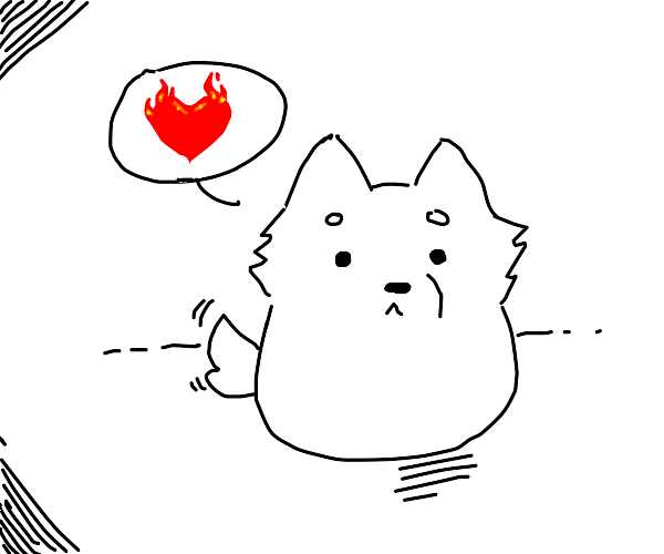 dog thinks about fire heart