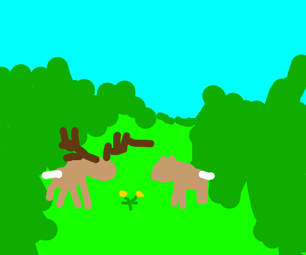 Two deer having a romantic dinner