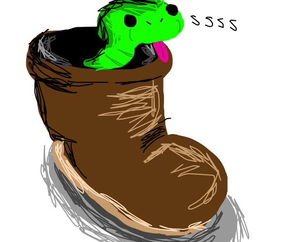 Boot snake
