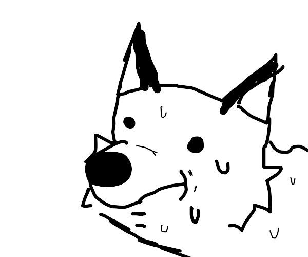 Sweaty fox
