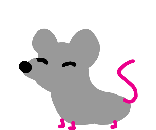 Blurry rat with closed eyes