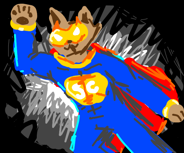 Kawaii flying super cat bro