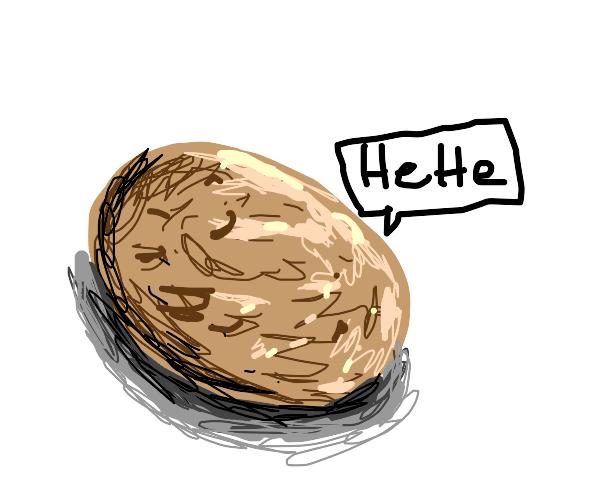 random potato is funny