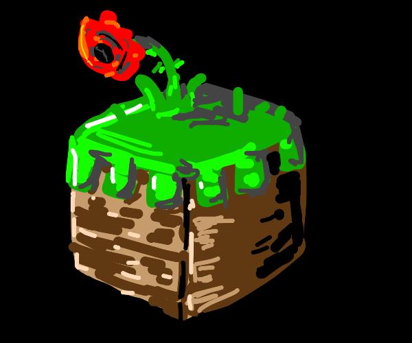 minecraft grass block with poppy