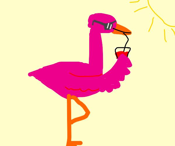 Flamingo enjoying a nice day