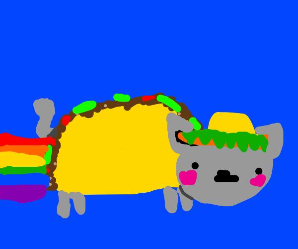 Nyan Taco