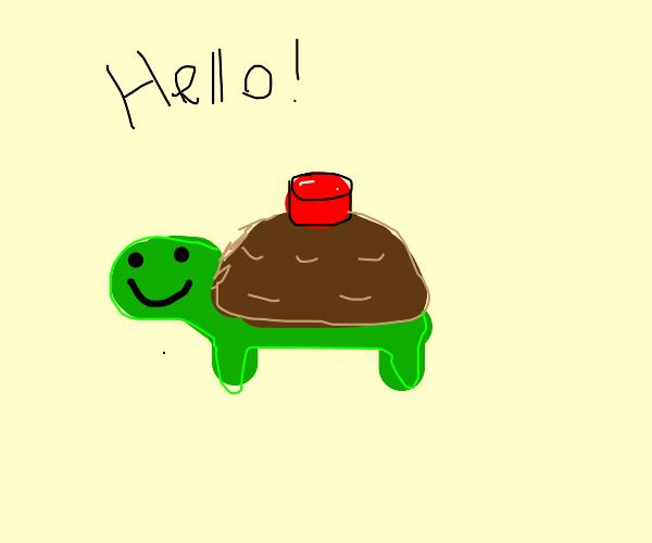 Hello Mineturtle!