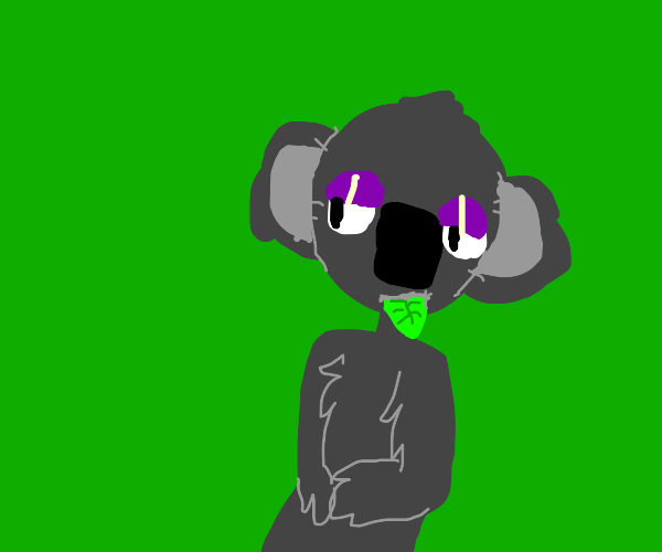 koala eating leaf
