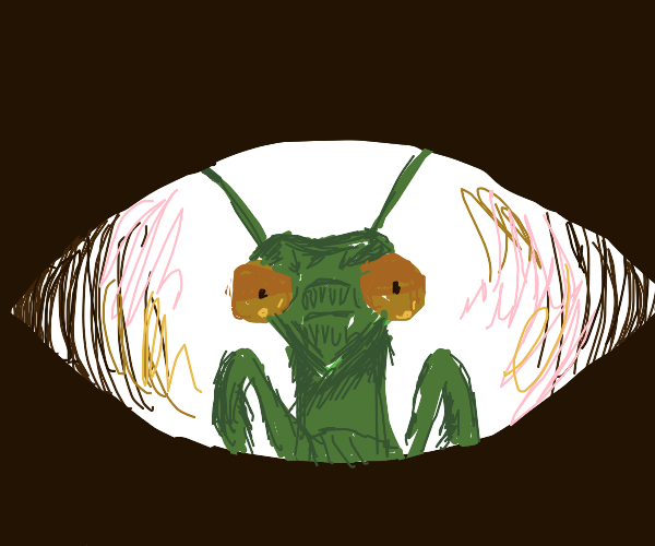Praying Mantis man face is your last sight