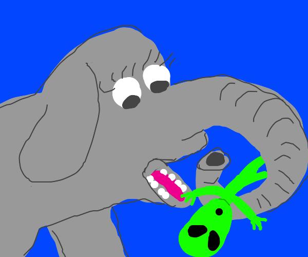 Elephant eats alien