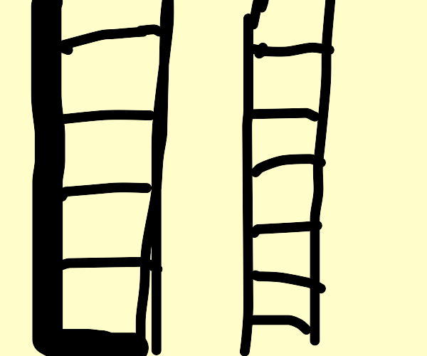 Ladder or ladder?