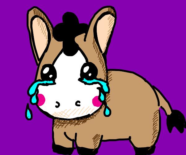 dunkey crying