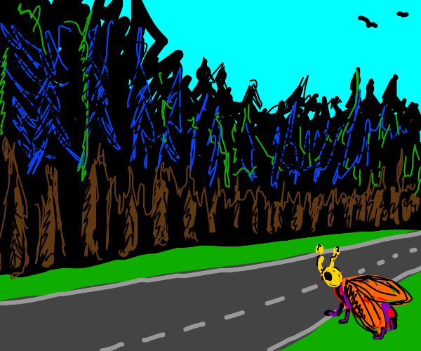 arrow bug crosses the road to the woods