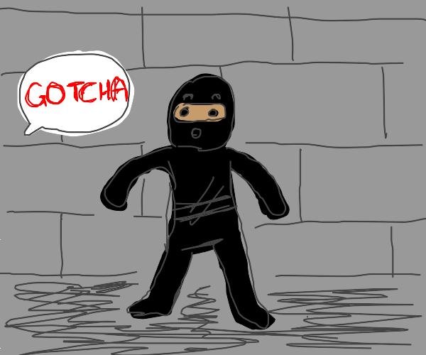 Incompetent Ninja