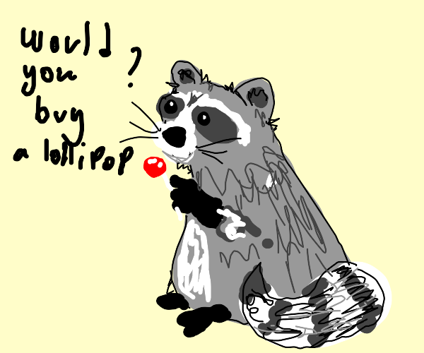 raccoon trying to sell lollipops