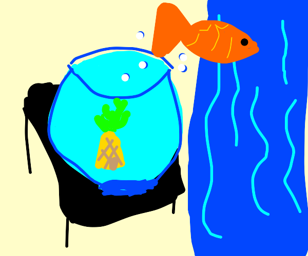 a goldfish swimming (he seems happy :) )