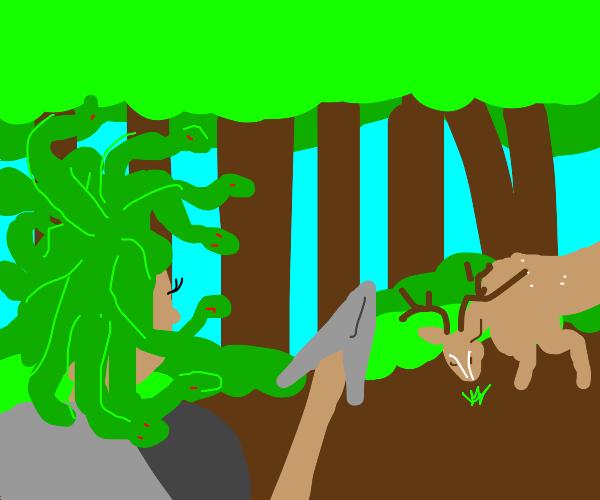 Medusa Hunting