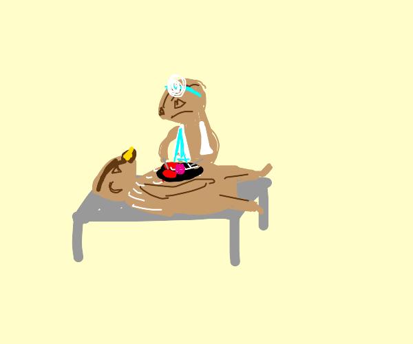 Meerkat Surgeon