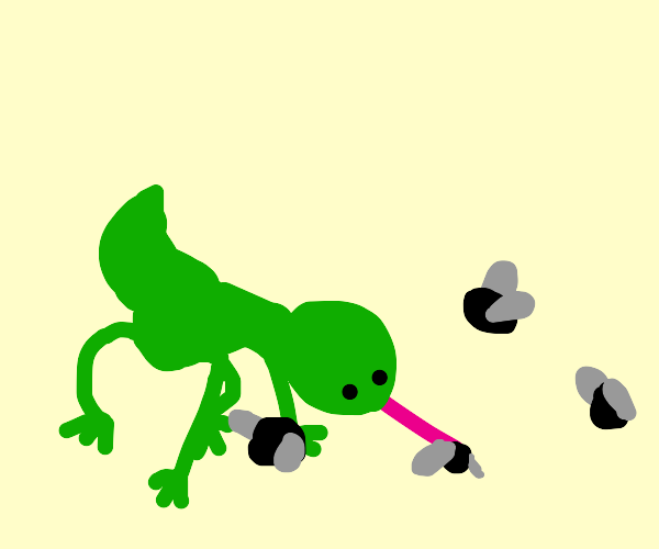 lizard eats flies