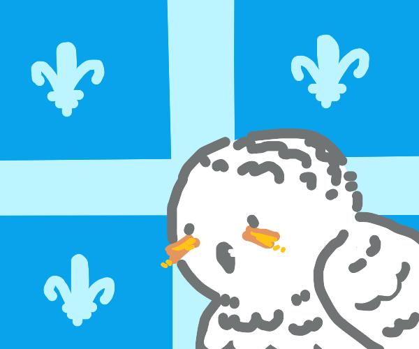 snowy owl with flag