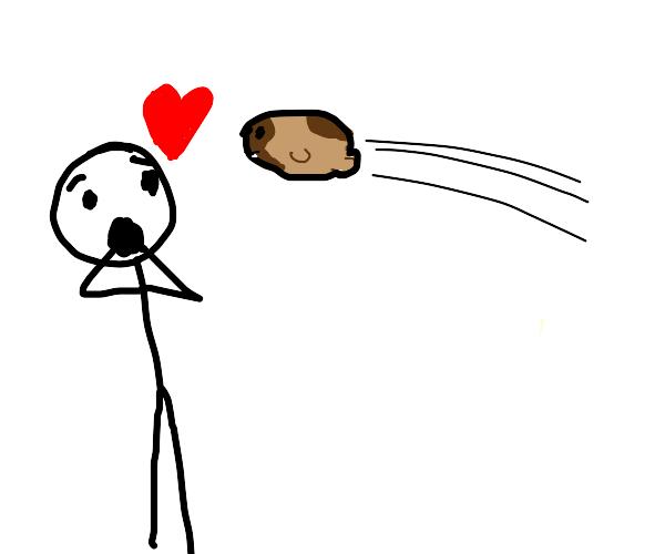 Guy loves his pet flying hamster