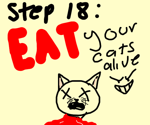 Step 17: Become an old crazy cat lady