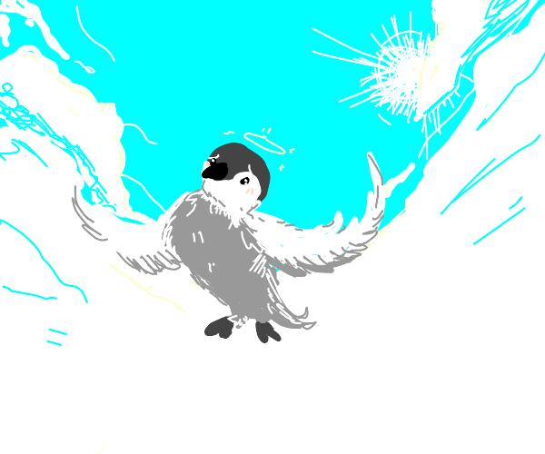 An angel penguin