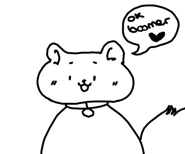 Cat says ok boomer