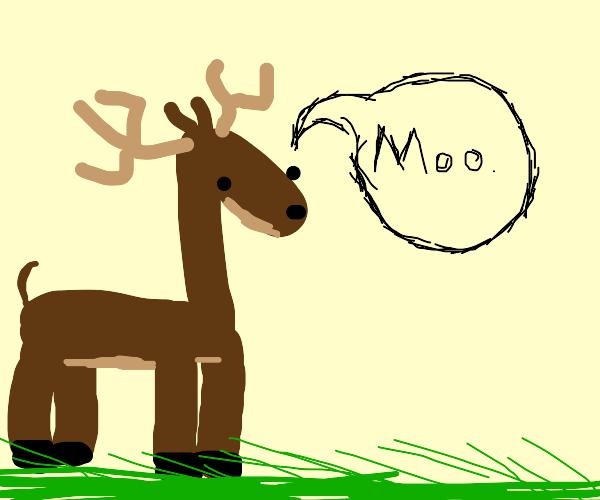 Deer goes 'moo'
