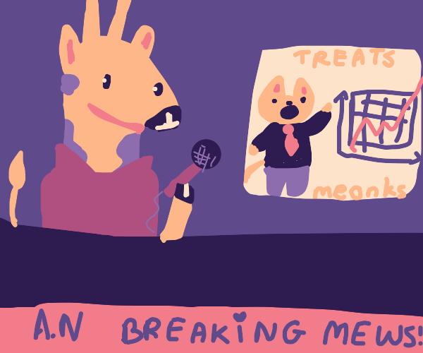 Animal news brodcasting treat stonks