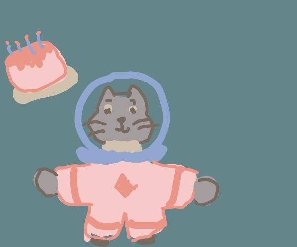 cat astronaut having birthday in space