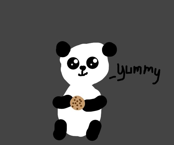 Panda enjoys a cookie