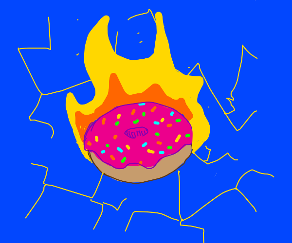 Flaming Electric Donut