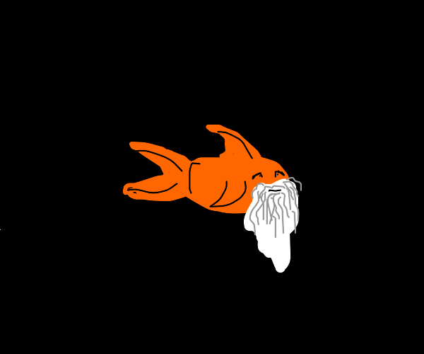 Old goldfish in the void with lure
