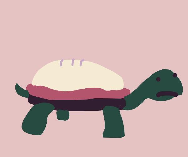 Apple pie turtle
