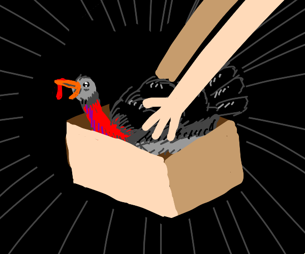 A turkey being put into a box