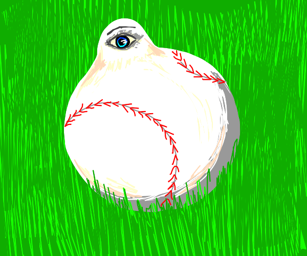 Baseball with an eye
