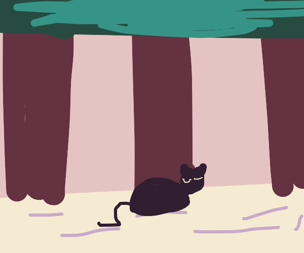 Cat sleeping in the forest
