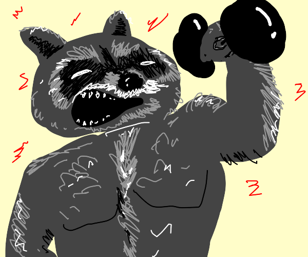 Racoon bulking up at the Gym