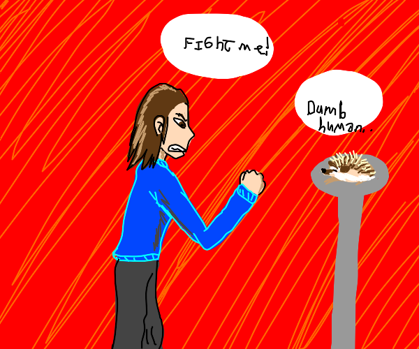 angry man wants to fight a hedgehog