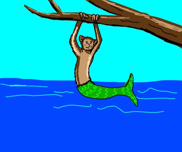 Half monkey, half mermaid