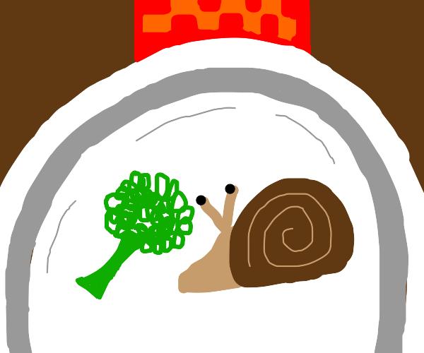 snail on brocoli