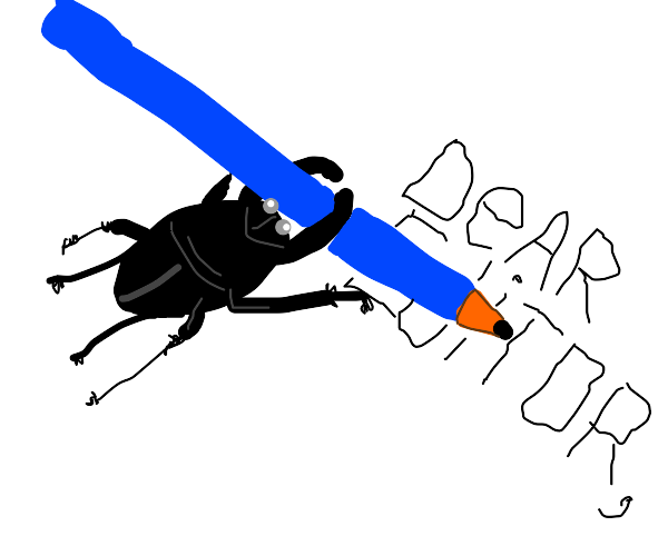 Beetle writing to Investor