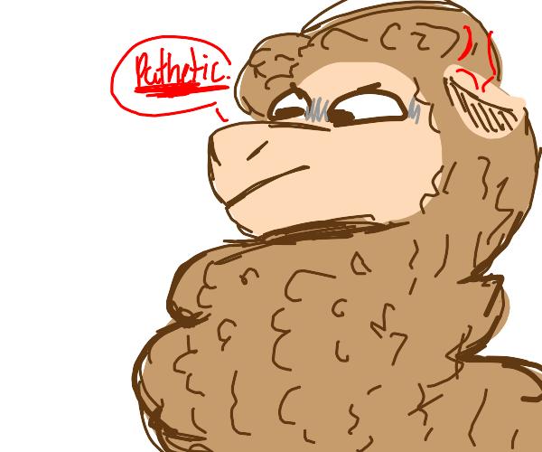 pissed off llama