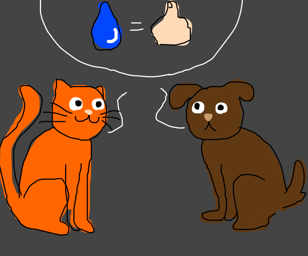 Cat and dog conclude that water is good