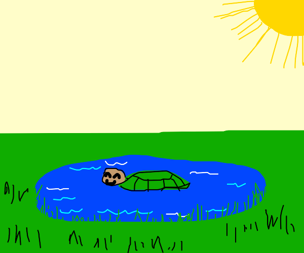 happy turtle in nice pond